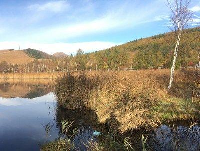 秋の白樺湖