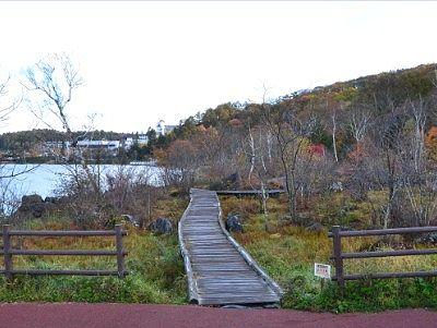 湖畔の遊歩道の様子