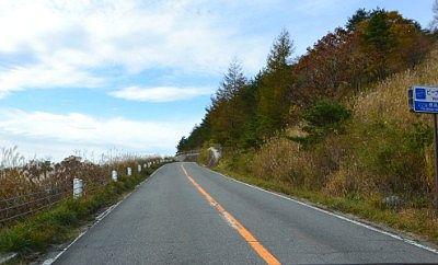 ビーナスラインの道路