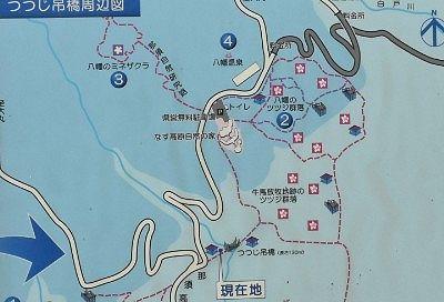 つつじ吊橋周辺遊歩道地図