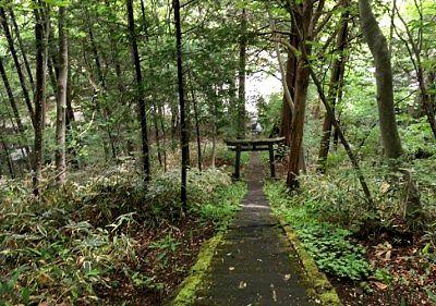 愛宕神社から見た下りの石段の様子