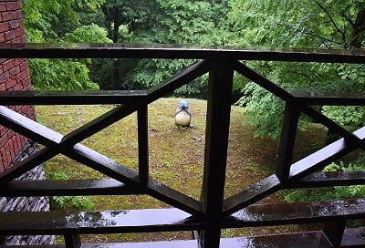 外で見つけた傘をさしてたトトロ