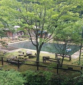 プールのような大きな露天風呂