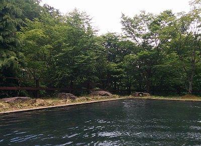 開放的な温泉プールからの景色