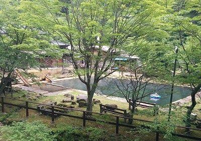 遊歩道から見た温泉プール
