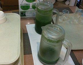 乳酸菌入りニュージーランドの有機大麦若葉