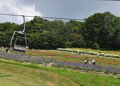 花畑の横を通るリフト