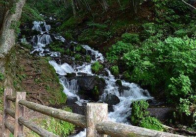 道路脇から見えた強清水の滝