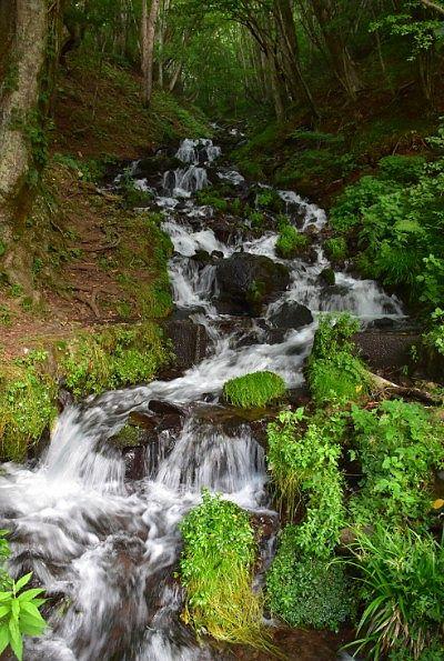 絵になる美しい強清水の滝