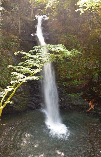 不動滝の全景