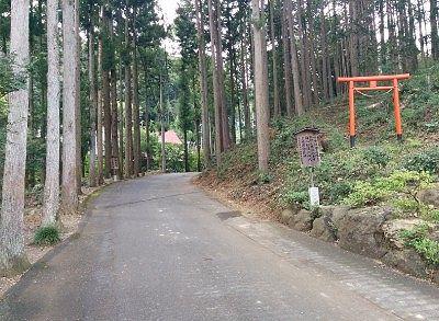 鳳仙寺への杉並木
