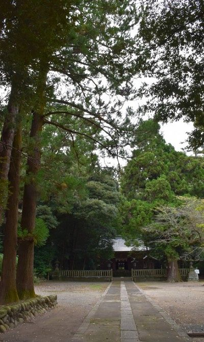 大木に囲まれた境内の様子