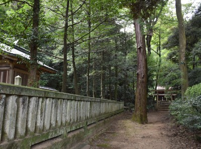 社殿横の道