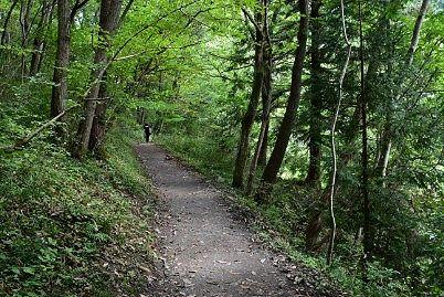 和銅遺跡への遊歩道の様子
