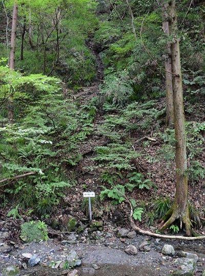和銅露天掘り跡