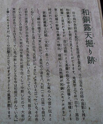 和銅露天堀り跡の説明書き