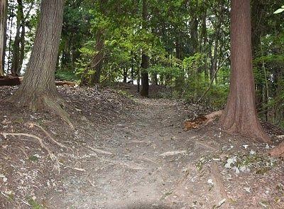 山頂への遊歩道の様子