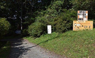 宝登山小動物公園への遊歩道の様子