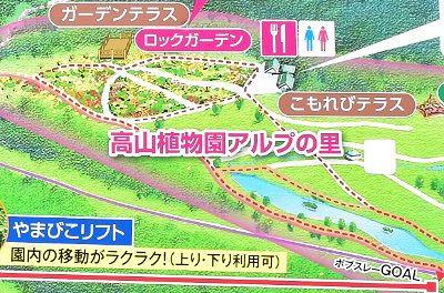 高山植物園アルプの里周辺地図