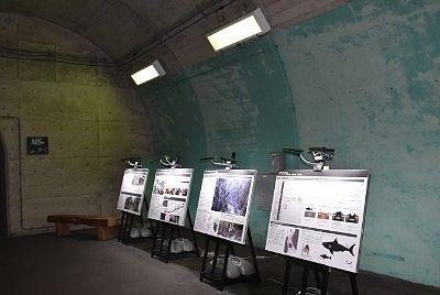 トンネル内資料エリア