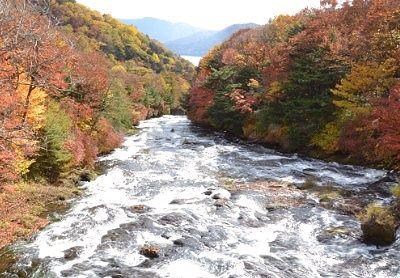 竜頭滝上の紅葉