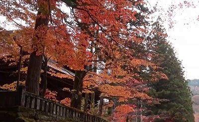輪王寺の紅葉
