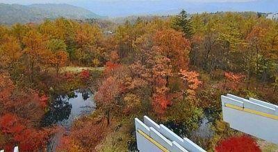 大江戸温泉物語日光霧降から見える紅葉
