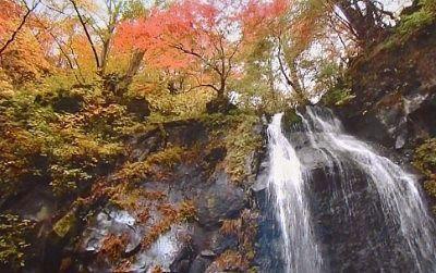 裏見滝の紅葉