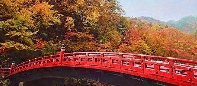 神橋の紅葉
