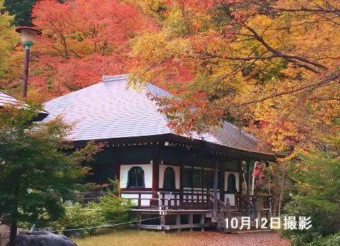 紅葉の温泉寺