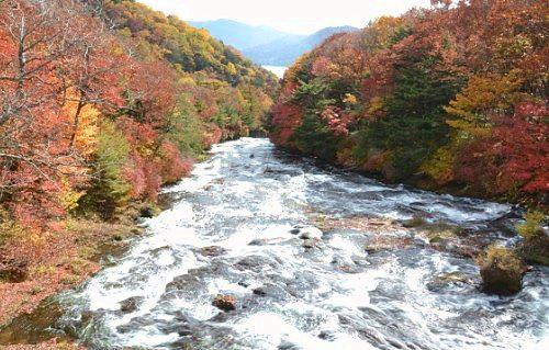 紅葉の竜頭の滝上からの景色