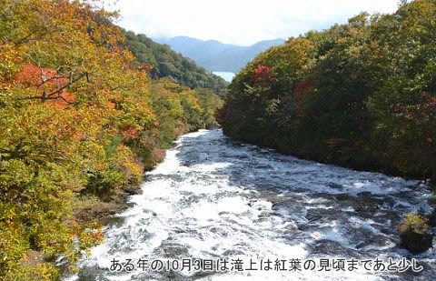 10月3日竜頭の滝の滝上紅葉の様子