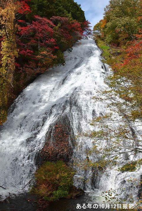 紅葉の湯滝の景色