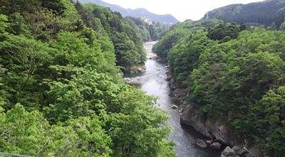 鬼怒楯岩大吊橋から見た新緑の景色