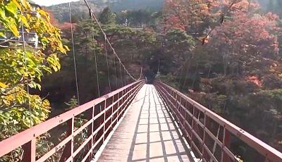 滝見橋の紅葉の景色