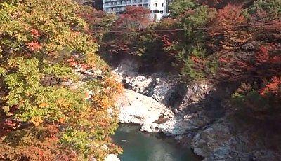 滝見橋から見た紅葉の景色