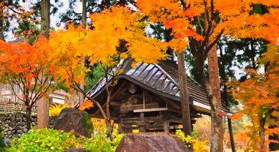紅葉の関興寺