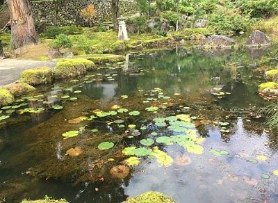 円光池と奥に登龍の滝