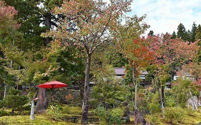関興寺境内の景色