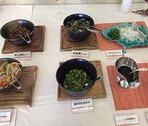 小松菜ツナ和え、根菜のゴマ和え、桜エビとおくら、オニオンスライスなど