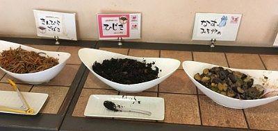 きんぴらごぼう、ひじき、ナス味噌炒め、玉こんにゃく、小松菜のおひたし