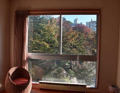窓から見えた紅葉の景色