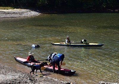 愛犬を乗せてカヌーする人たち