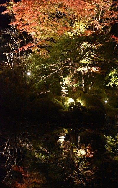 水鏡となった逍遥園ライトアップ