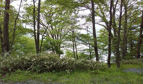 G~H区画からの大沼の景色