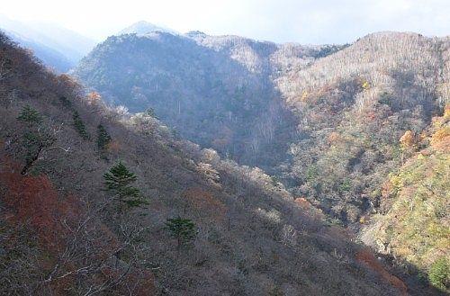 六万沢橋からの山側の景色