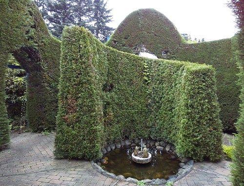 中庭の様子
