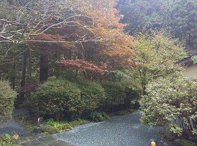 清風園の庭