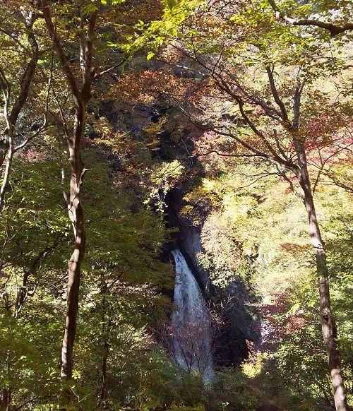 紅葉と小中大滝