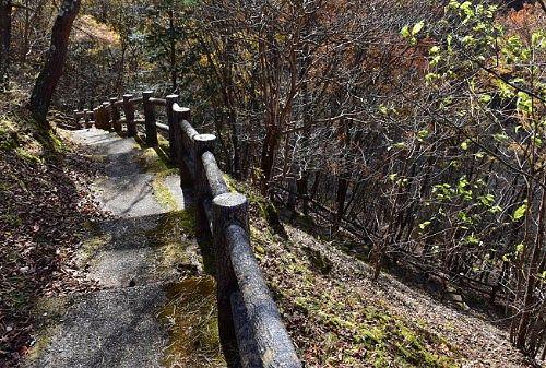 庚申川への遊歩道